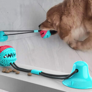 Biting Toy for Dogs